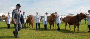 The Chief Executive of FACE (Farming & Countryside Education) is to head up a panel of UK agricultural show experts speaking at a national Learning Day in Staffordshire this week.