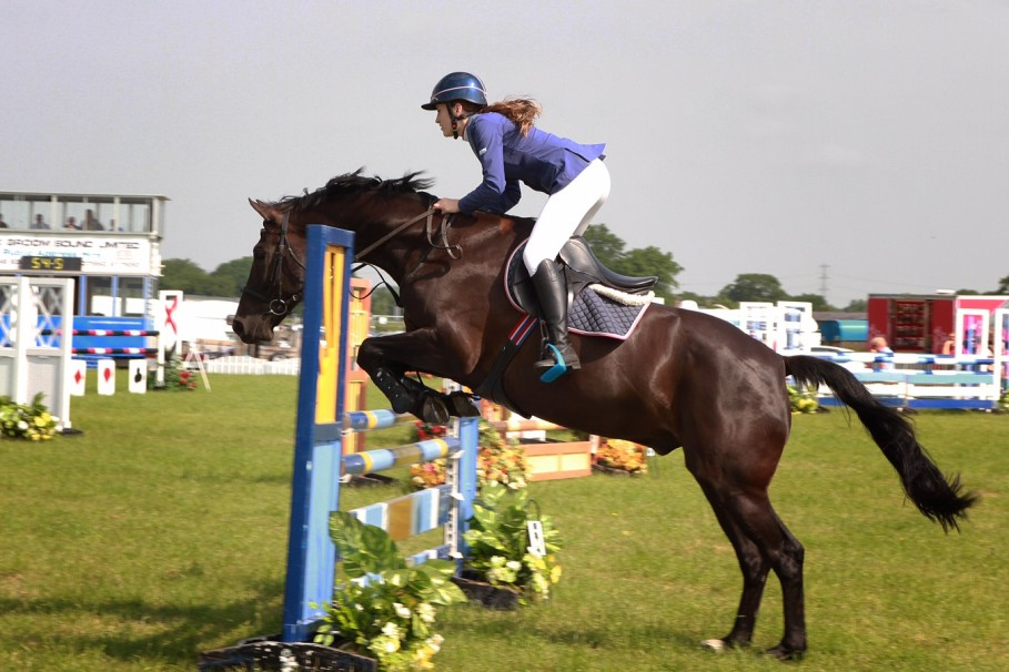 Trade Stands Hoys 2015 : Saddle up! cheshire shows rise to becoming a major horse event