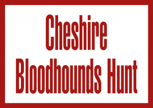 Cheshire Bloodhounds Hunt