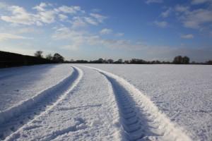 cheshireshow-winter
