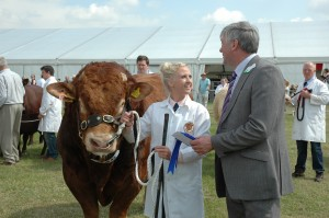 The Royal Cheshire County Show livestock