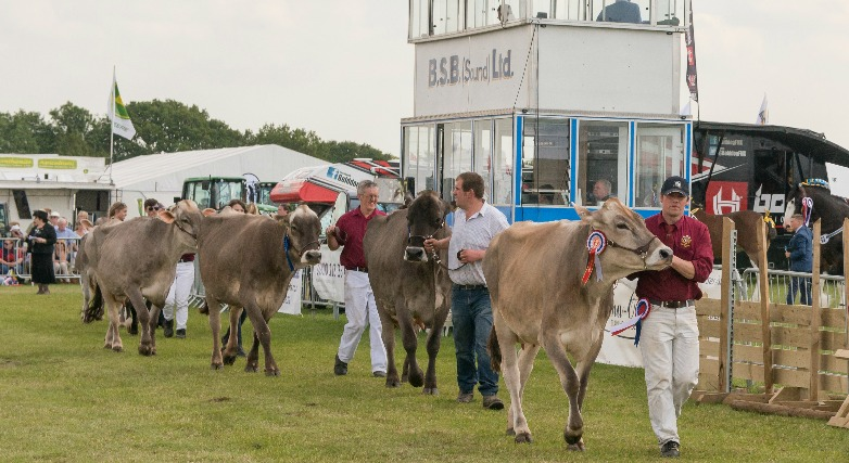 Silk 106 9 and Dee 106 3 to be 'herd' as new Royal Cheshire