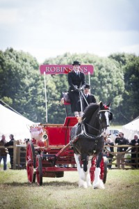 Shire-Horse-2-Robinsons