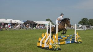 Cheshire Show Tuesday (early pics) (1)