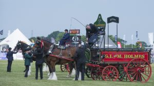 Cheshire Show Tuesday (early pics) (32)